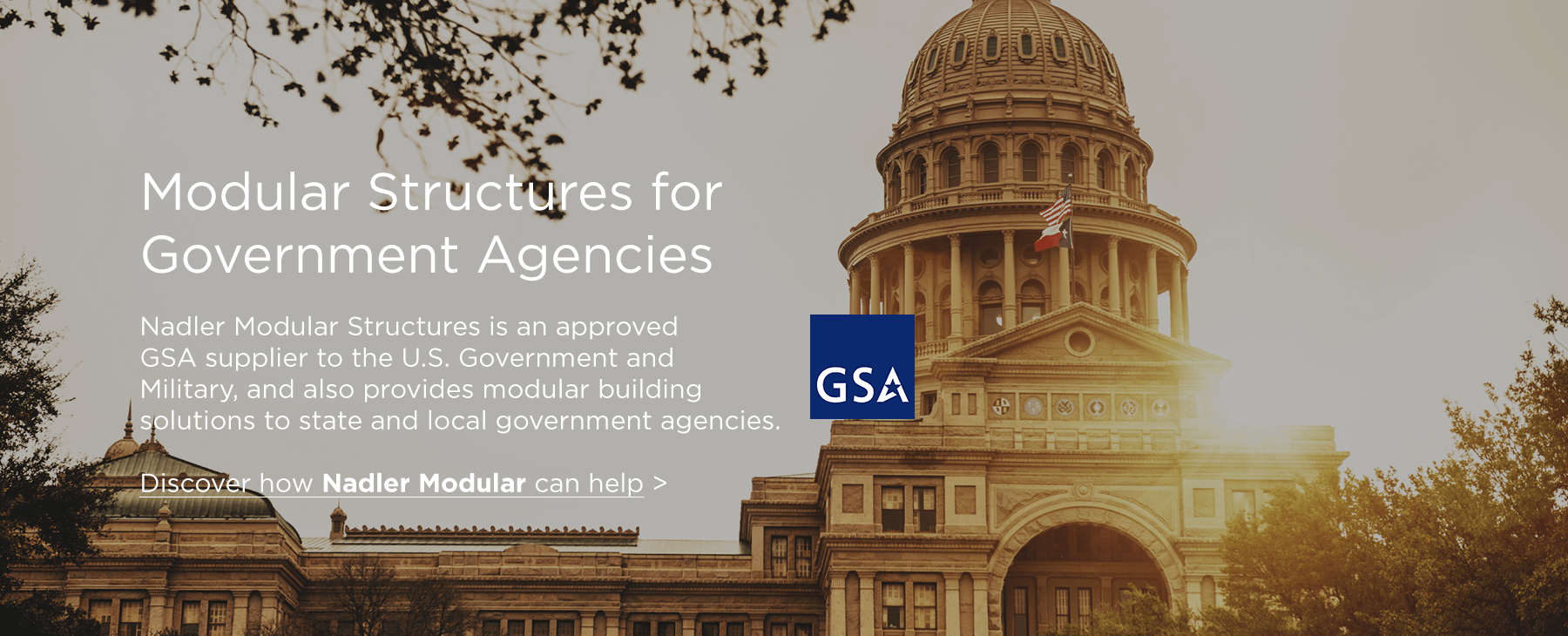 Modular Solutions for Government
